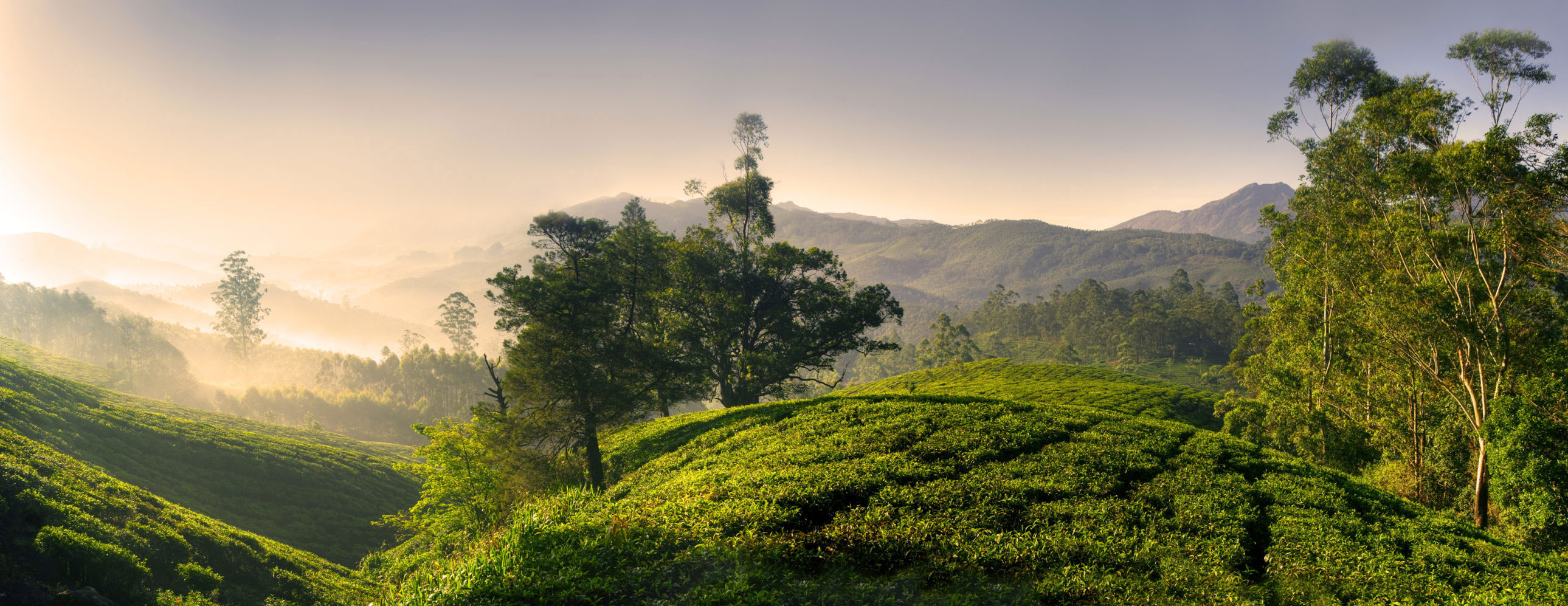 Bekal is a quiet piece of land in Kasaragod locale, Kerala. Its unexplored surroundings are what add to the appeal of the land.